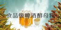 食品級啤酒酵母粉 1