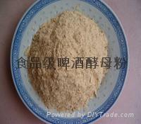 食品级啤酒酵母粉 4