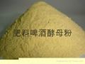 肥料級啤酒酵母粉 1