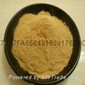 自溶粉生產銷售