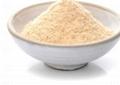 食品级啤酒酵母粉 5