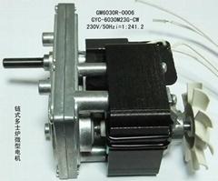 GM6030R0006 交流微型减速电机