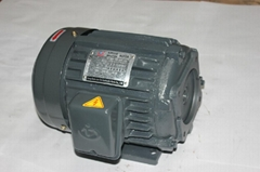 hydraulic electric motor
