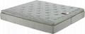 Plush pillow-top Mattress with Natural Latex & Pocket Spring 1