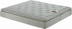 Plush pillow-top Mattress with Natural Latex & Pocket Spring