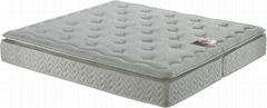 Plush pillow-top Mattress with Natural Latex & Pocket Spring