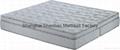 Luxury Memory Foam Mattress with Pocket