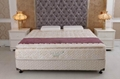New Design Pillow top Continuous Spring