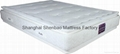 JD608  Double Pillow Top Style  JW