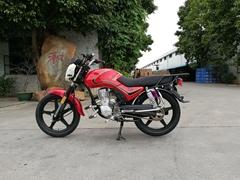 HOYUN HAOJIN 出口玻利維亞金狐CG125 CG150 CG200型摩托車