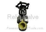 Forged Steel Socket Weld API Gate Va  es Supplier 1