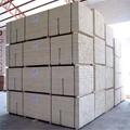 Korea market width 31.5mm Poplar   L plywood timber