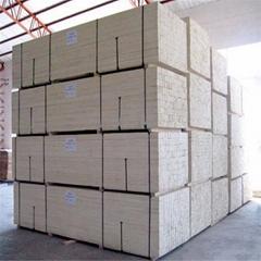 Korea market width 31.5mm Poplar LVL plywood timber