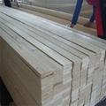 Korea market Poplar LVL board lvl timber 1