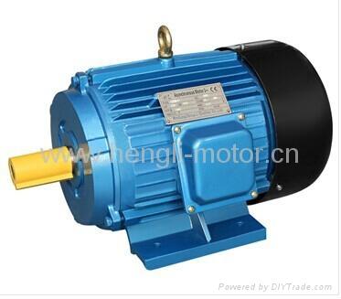 Y series three phase electric motor 2