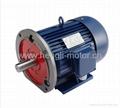 Y series three phase electric motor 4