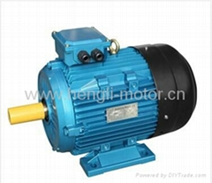 MS series cast alu high eff three phase electric motor