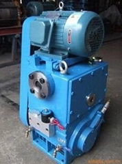High Efficiency Rotary Plunger Vacuum Pump with Competitive Price
