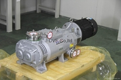 Variable Pitch Screw Dry Vacuum Pump for Photovoltaic Industry