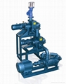 Roots Air Ejector Water Ring System for