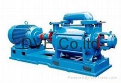 Liquid Ring Pump for Chemical Industry Vacuum Impregnation Process