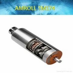 TM174 food processing drum motors