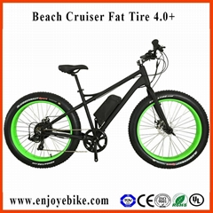 PE-TDE12Z  FAT TIRE Electric bicycle 4.0+