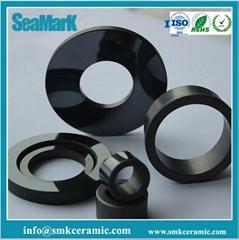 99% alumina ceramic seals for pumps