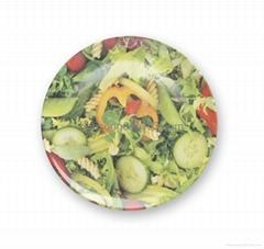 """10"""" melamine dinner plate"""