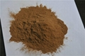 yeast powder 60%