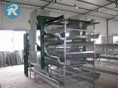 Stacked layer cage system for laying hens