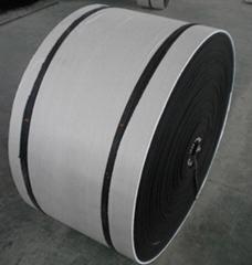 Hith-tenacity conveyor belts