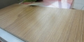 Middle embossment laminate flooring