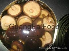 Canned Shiitake Mushroom