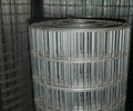 圈玉米电焊网 4