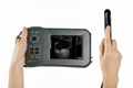 L60 New Portable Ultrasound For Swine