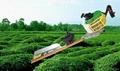 單刃綠籬機SL750B