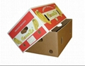 color printed fruit packaging boxes