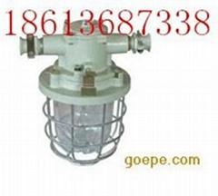 DGS-60隔爆型白熾燈-設計新穎
