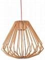 Modern Chandelier Pendant lamp-LBMP-ZSA