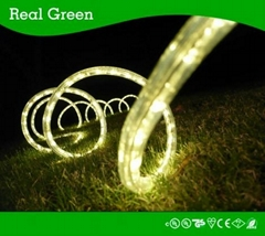 2-Wire Classic Warm White LED Rope Light