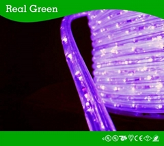 2-Wire Standard Purple LED Rope Light