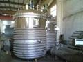 Stainless steel reactor 1