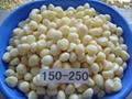 garlic cloves in brine