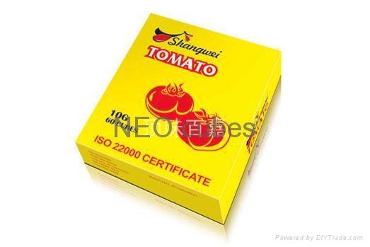 NEW ARRIVE Hot sales Africa food 10g bouillon cubes  5