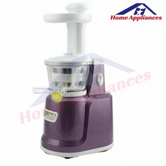 2014 Hot Sale Low Speed Juicer
