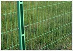 高速公路雙邊絲護欄網