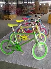 Xingtai Changjiang Bicycle Co.,Ltd