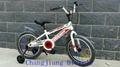 cool kids bike for boys