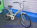 Europe market  quality road bike for